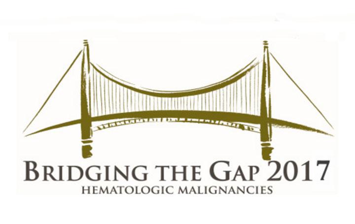 Adolfo de la  Fuente participa en Bridging the gap 2017
